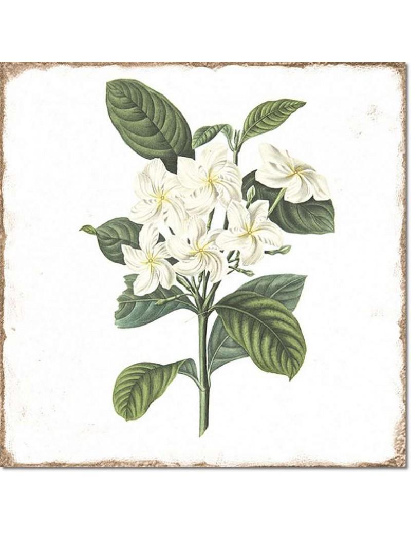 Płytka Fabresa Forli Flowers Decor Mix 20x20