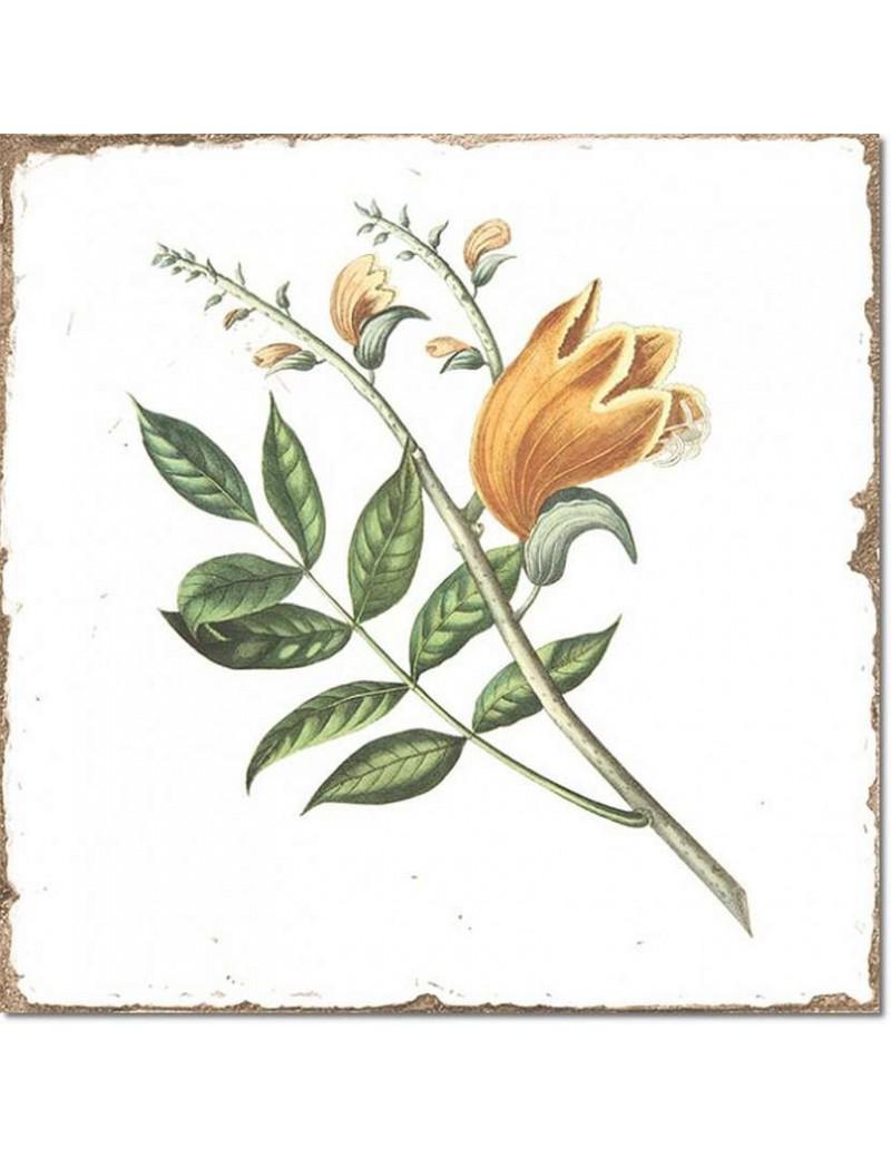 Płytka Fabresa Forli Flowers Decor Mix 15x15